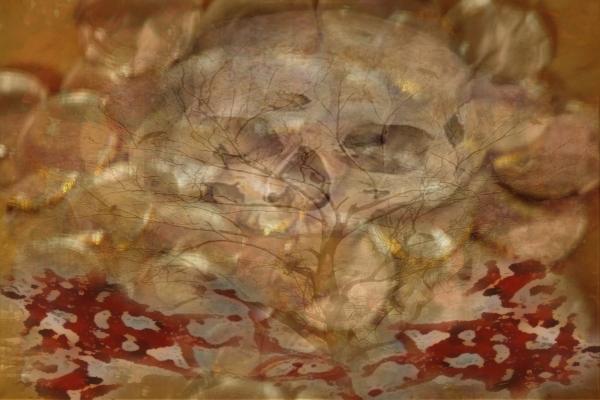 Geldboom des doods