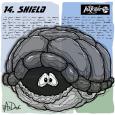 14-Shield-2